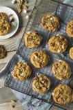 Homemade Gooey Smores Cookies stock photos