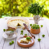 Homemade gooseberry pie royalty free stock photography