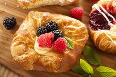 Homemade Gourmet Danish Pastry Stock Images