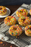 Homemade Gourmet Donuts with Cereal on Top Stock Image