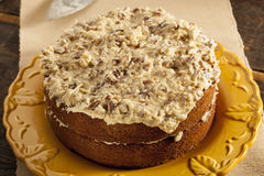 Homemade Gourmet German Chocolate Cake Royalty Free Stock Images