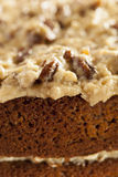 Homemade Gourmet German Chocolate Cake Royalty Free Stock Photography