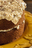 Homemade Gourmet German Chocolate Cake Stock Image