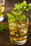 Homemade Gourmet Mint Julep Stock Image