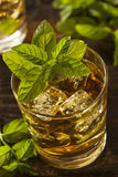 Homemade Gourmet Mint Julep Royalty Free Stock Photography