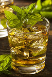 Homemade Gourmet Mint Julep Stock Photography