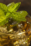 Homemade Gourmet Mint Julep Royalty Free Stock Images