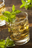 Homemade Gourmet Mint Julep Stock Images