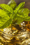 Homemade Gourmet Mint Julep Royalty Free Stock Photos