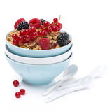 Homemade granola with berries in bowls and spoons,  isolated Stock Image
