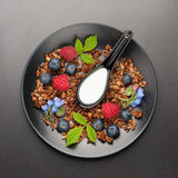 Homemade granola with berries . Top view Stock Photo
