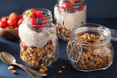 Homemade granola and chia seed pudding with berry healthy breakf Stock Images