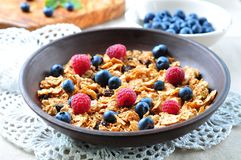 Homemade granola with fresh blueberries, raspberries, raisins, milk and honey. Healthy Breakfast. Dinner Stock Photo