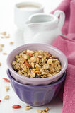 Homemade granola with goji berries Royalty Free Stock Photography