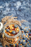 Homemade granola in jar and fresh blueberry Royalty Free Stock Photo