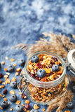 Homemade granola in jar and fresh blueberry Stock Images