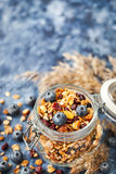 Homemade granola in jar and fresh blueberry Stock Photos