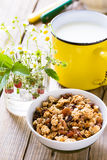 Homemade granola and mug of milk Stock Image