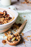 Homemade granola with oatmeal, dried cranberry, almond, walnut, pumpkin seeds in a bowl Royalty Free Stock Photo
