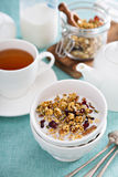 Homemade granola with quinoa and cranberry. Homemade granola with quinoa and dried cranberry Royalty Free Stock Photos