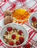 Homemade granola with raspberries, walnuts and honey Royalty Free Stock Image