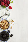 Homemade granola with yogurt and berry Royalty Free Stock Photos