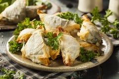 Homemade Greek Spanakopita Pastry Stock Photos