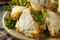 Homemade Greek Spanakopita Pastry. With Feta and Spinach Royalty Free Stock Photography