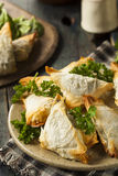 Homemade Greek Spanakopita Pastry Royalty Free Stock Images