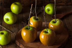 Homemade Green Caramel Apples Royalty Free Stock Photo