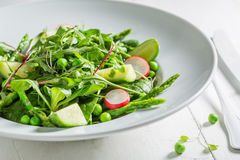 Homemade green salad with mix of vegetables Stock Photos