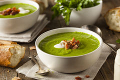 Homemade Green Spring Pea Soup Royalty Free Stock Photography