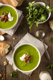 Homemade Green Spring Pea Soup Stock Image