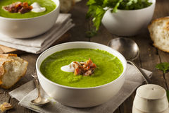 Homemade Green Spring Pea Soup Stock Photos