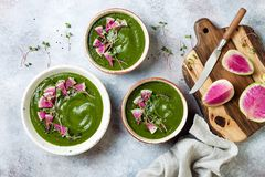 Homemade green spring spinach cream soup decorated with watermelon radish, black sesame seeds and microgreens. stock photo