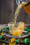 Homemade green tea in cup Stock Photography