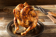 Homemade Grilled Beer Can Chicken Stock Images