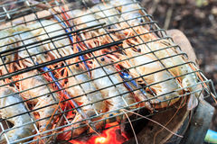 Homemade grilled river prawns. Royalty Free Stock Photos