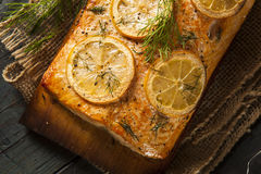 Homemade Grilled Salmon on a Cedar Plank Stock Photo