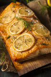 Homemade Grilled Salmon on a Cedar Plank Stock Images