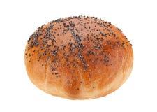 Homemade hamburger bun with poppy seeds Stock Images