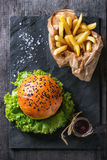 Homemade hamburger with french fries Stock Image