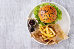 Homemade hamburger with french fries Stock Photo