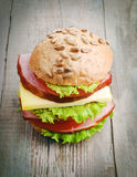 Homemade hamburger with fresh vegetables Royalty Free Stock Photo