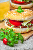 Homemade hamburger with fresh vegetables. Stock Image
