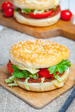 Homemade hamburger with fresh vegetables. Royalty Free Stock Photography