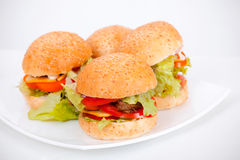 Homemade hamburgers lay on plate Stock Photography
