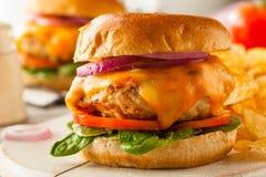 Homemade Healthy Chicken Burger Stock Photo