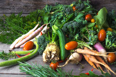 Homemade healthy fresh vegetables Royalty Free Stock Image