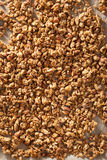 Homemade healthy granola on backing paper background Royalty Free Stock Images